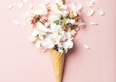 waffle cone with white almond blossom flowers JNRYPUM 400x284 - Portfolio