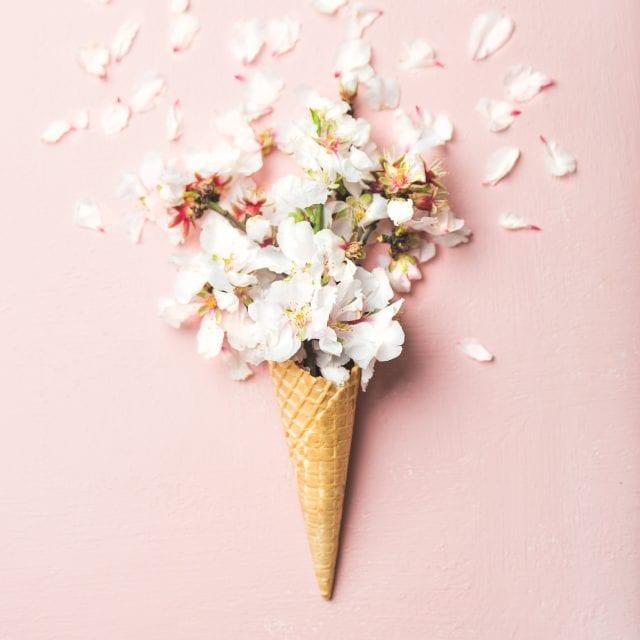 waffle cone with white almond blossom flowers JNRYPUM 640x640 - Portfolio